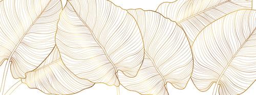 Fotomural frunze aurii, natură, aur, minimalism, frunze monstera