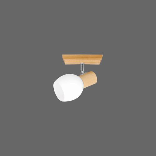 Ramos lampă de tavan 1 natural