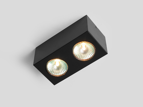 Corp de iluminat pentru tavan FLASS 2 - negru