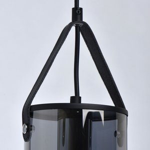 Lampa suspendată Alpha Megapolis 1 Negru - 673014701 small 4