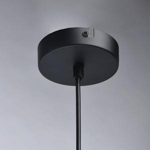 Lampa suspendată Alpha Megapolis 1 Negru - 673014701 small 7