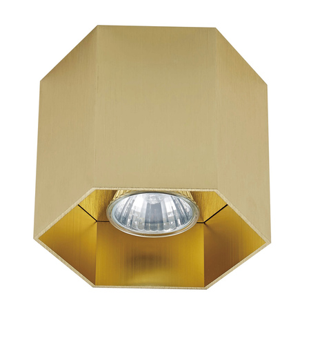 Zuma Line 20035-GD POLYGON CL 1 SPOT GOLD / GOLD