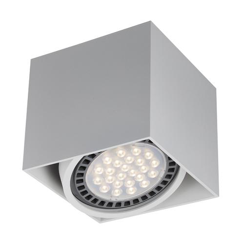ACGU10-114 BOX1 PLAFON WHITE / ALB