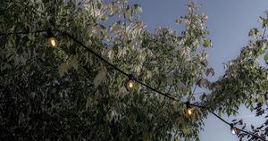 Grădină cu șnur negru lumină de grădină 20m 20 faruri small 2