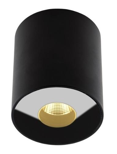 Plafonul negru cu plasmă IP54 C0151 Max Light