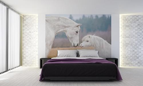 Cai de perete, ponei Shetland, cal alb, tapet de perete
