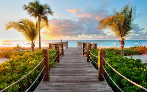 Plaja de perete, palmieri, pod din lemn, apus de soare