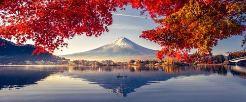 Mural cu vedere la vulcanul Fuji, lacul și copacii, contrastul culorilor calde și reci