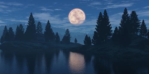 Fotomural pentru dormitor luna, pădure, cer tulbure, reflectare pe o suprafață de apă
