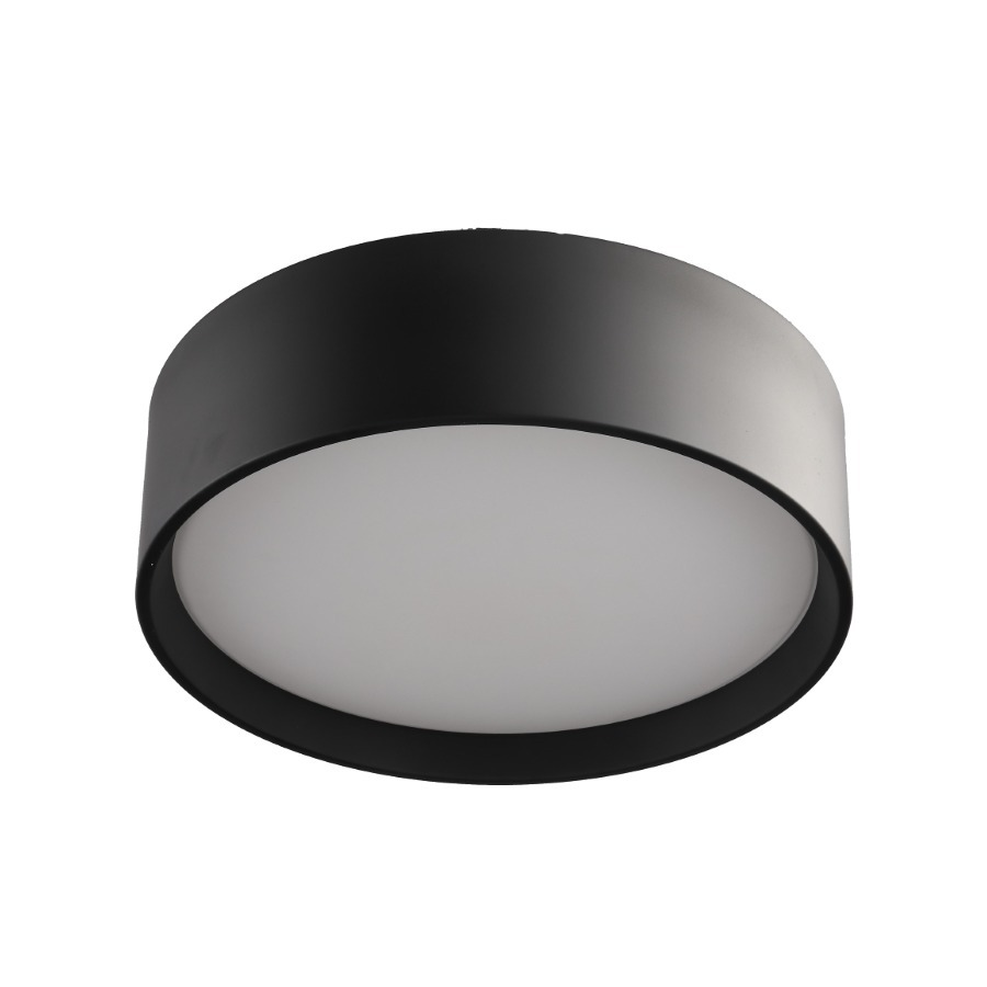 Hudson lampă neagră de tavan